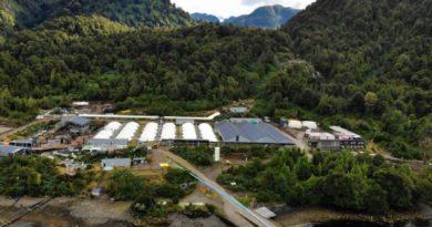 Mowi Chile detuvo obras de ampliación en Piscicultura del Fiordo Aysén por COVID-19