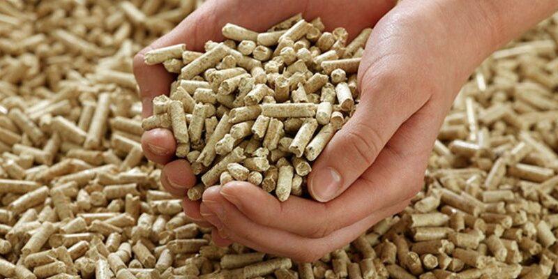 Primera fábrica de pellets en Coyhaique apresta su entrada en funcionamiento