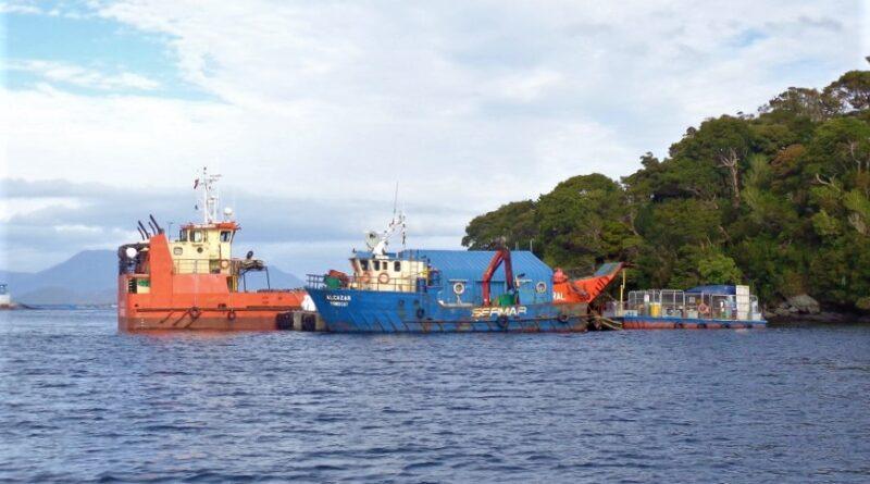 SMA formuló cargos contra Blumar S.A. por centros de engorda de salmónidos