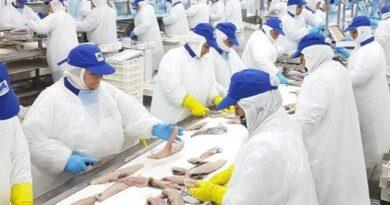 Cooperativa de Trabajadores de Pesquera Friosur repartió su primer dividendo entre sus 250 socios